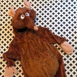 Ratatouille costume (used as Master Splinter)